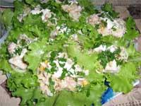 Закуска рыбная на листьях салата