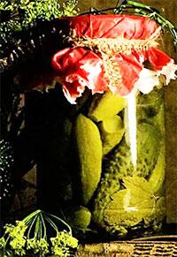 Огурчики, маринованные с укропом (Заготовки на зиму)
